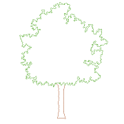 Dwg Cad Objekte: Baum Front-Ansicht