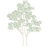 Dwg Cad Objekte: Nussbaum