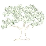 Dwg Cad Objekte: Olivenbaum Ansicht