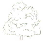 Dwg Cad Objekte: Maple Ansicht
