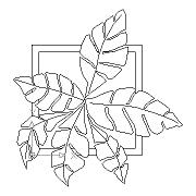 Dwg Cad Objekte: Zimmerpflanze