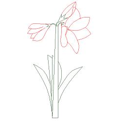 Dwg Cad Objekte: Rote Blume Ansicht