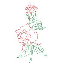 Dwg Cad Objekte: Rosen, Blumen