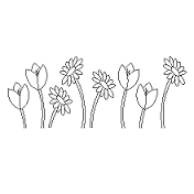 Dwg Cad Objekte: Blume Ansicht