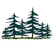 Dwg Cad Objekte: Kiefer und Tanne Wald