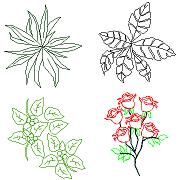 Dwg Cad Objekte: Haus Pflanzen, Rosen