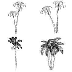 Dwg Cad Objekte: Palmen, Ansicht