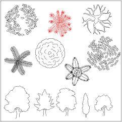 Dwg Cad Objekte: 34 Bäume, Draufsicht, Ansicht, dwg